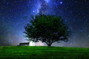 草原と星空